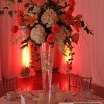 Elm Court Lenox MA Wedding -  www.robalberti.com1 IMG_9577